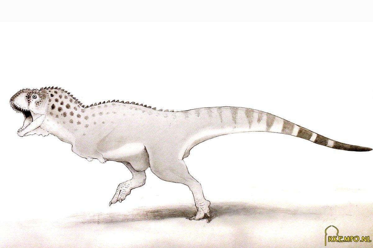 dinosaurus-marokko.jpg